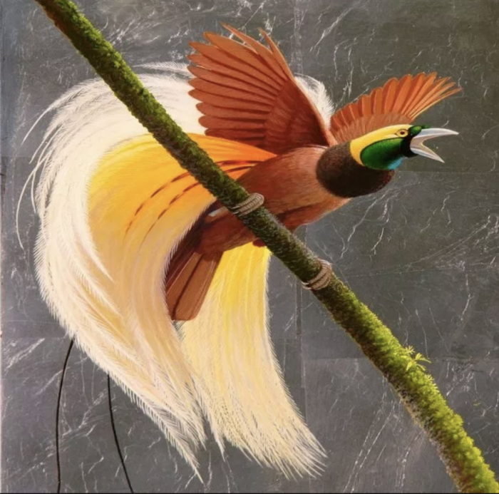 Ragiana Bird of Paradise