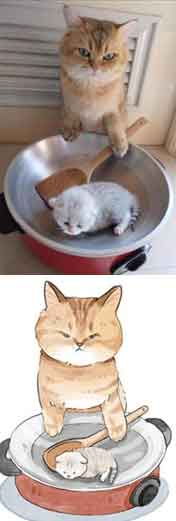 Cat cooking his kitten